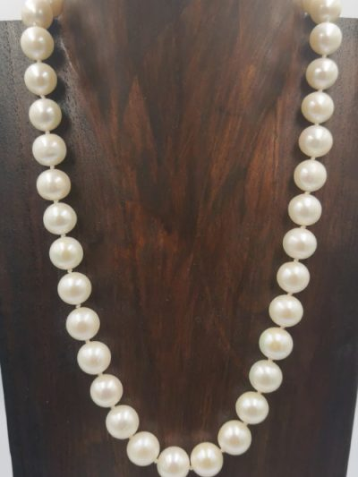 Stunning off-white near-round freshwater pearl necklace