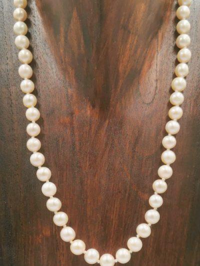 Cream (pink overtones) near-round freshwater pearl necklace